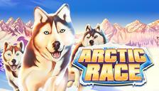 Arctic Race™