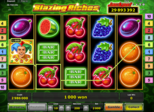 Blazing Riches Paytable