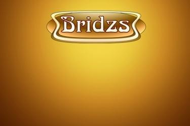 Bridzs