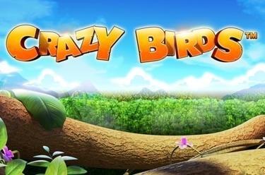 Crazy Birds™
