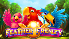 Feather Frenzy™