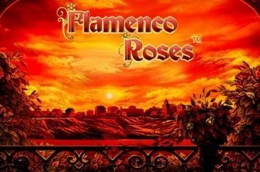Flamenco Roses™