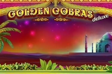 Golden Cobras™ deluxe