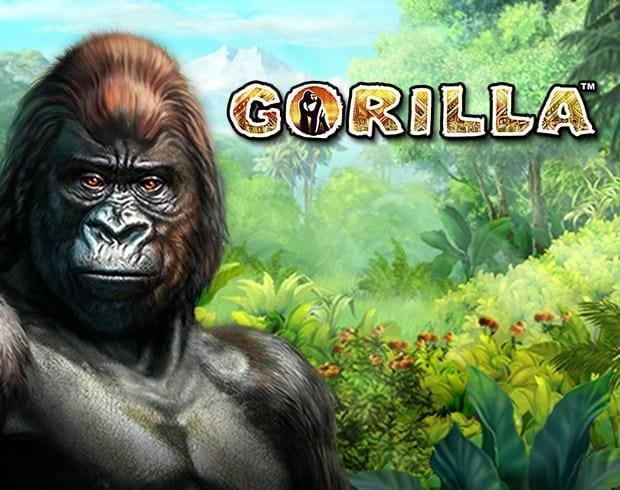 Play Gorilla Online Free Gametwist Casino