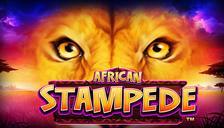 Highroller African Stampede™