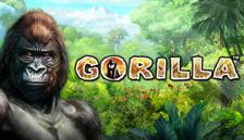 Highroller Gorilla™