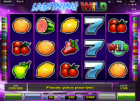 Lightning Wild™ Paytable