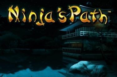 Ninja's Path™