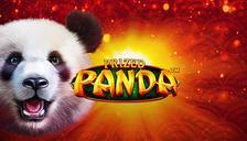 Prized Panda™