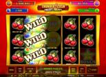 Thunder Cash™ Fruity Fruity Paytable